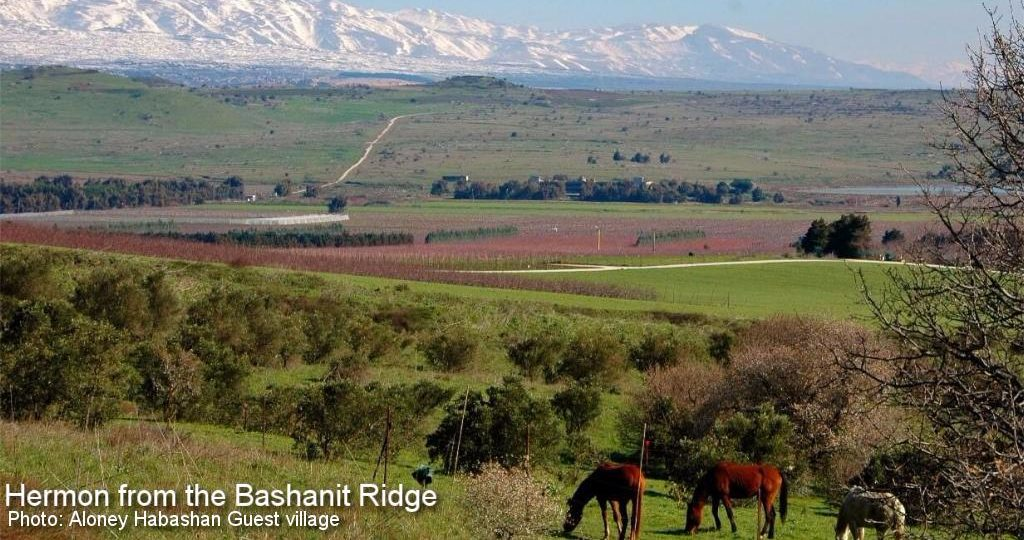 Mount Hermon from the Bashanit ridge