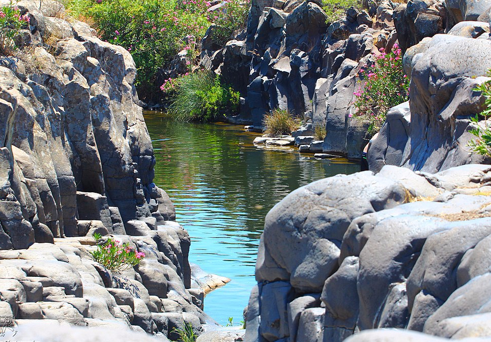 A typical pool in The Zavitan Stream, Golan Height, Israel
