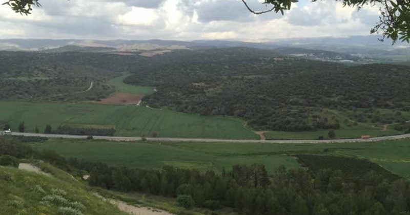 Scenic road trrip from Tel Aviv (Or Ben Gurion airport) to Jerusalem