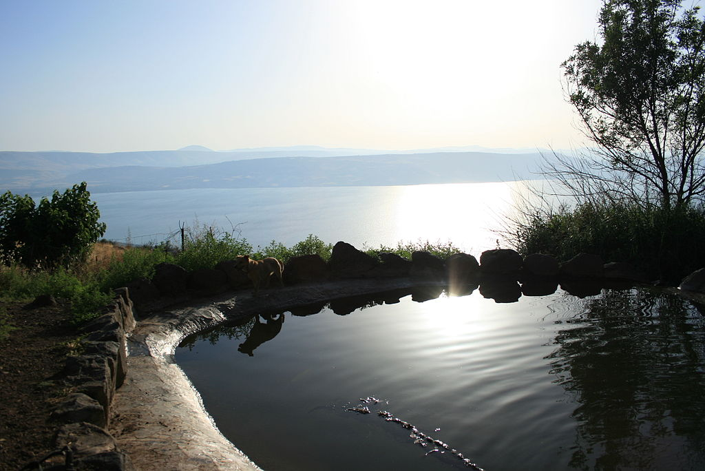 Ein Shoko Spring overlooking the sea of galilee
