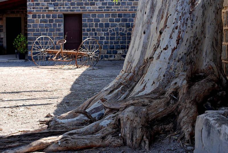 Historic Kinneret Courtyaed