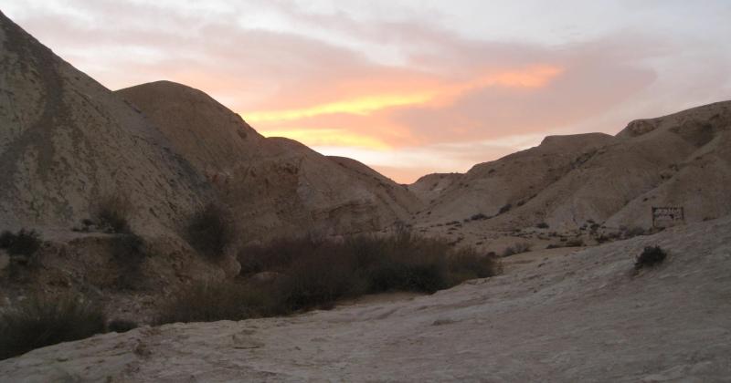 Ein Avdat National Park Hike