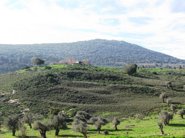 Mount Atzmon, Galilee, Israel