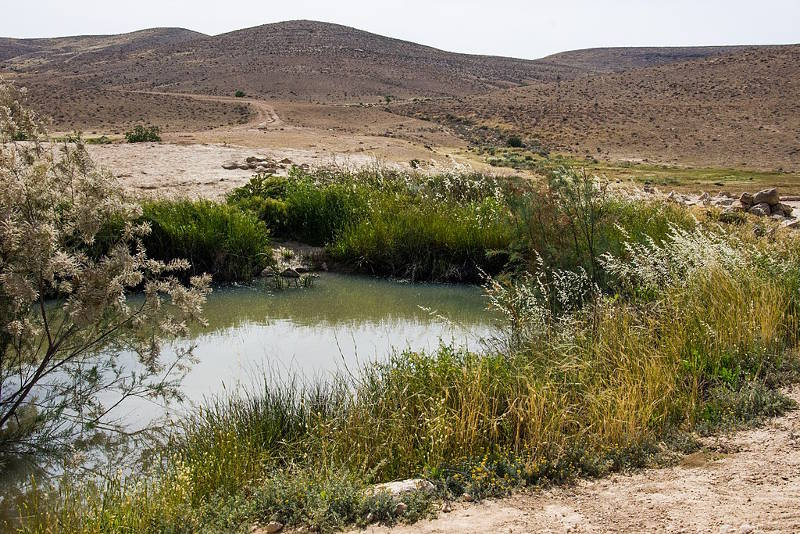 Borot Lotz, Negev Desert
