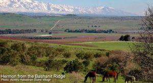 Inn to Inn Hiking / Backpacking the Golan Trail