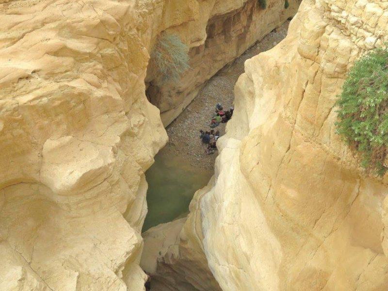 Naama Pool in the Judean Desert