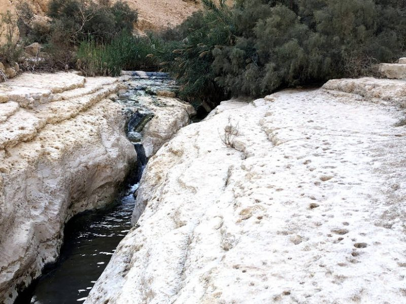 Arugot stream at the ein gedi natural reserve