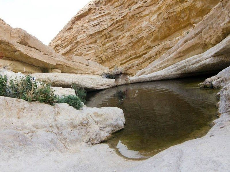 Water in Wadi Hatzatz