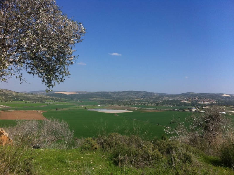 Elah Valley - Israel
