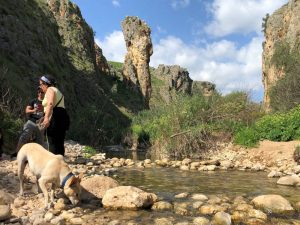 Ein Amud in Lower Nahal Amud hike